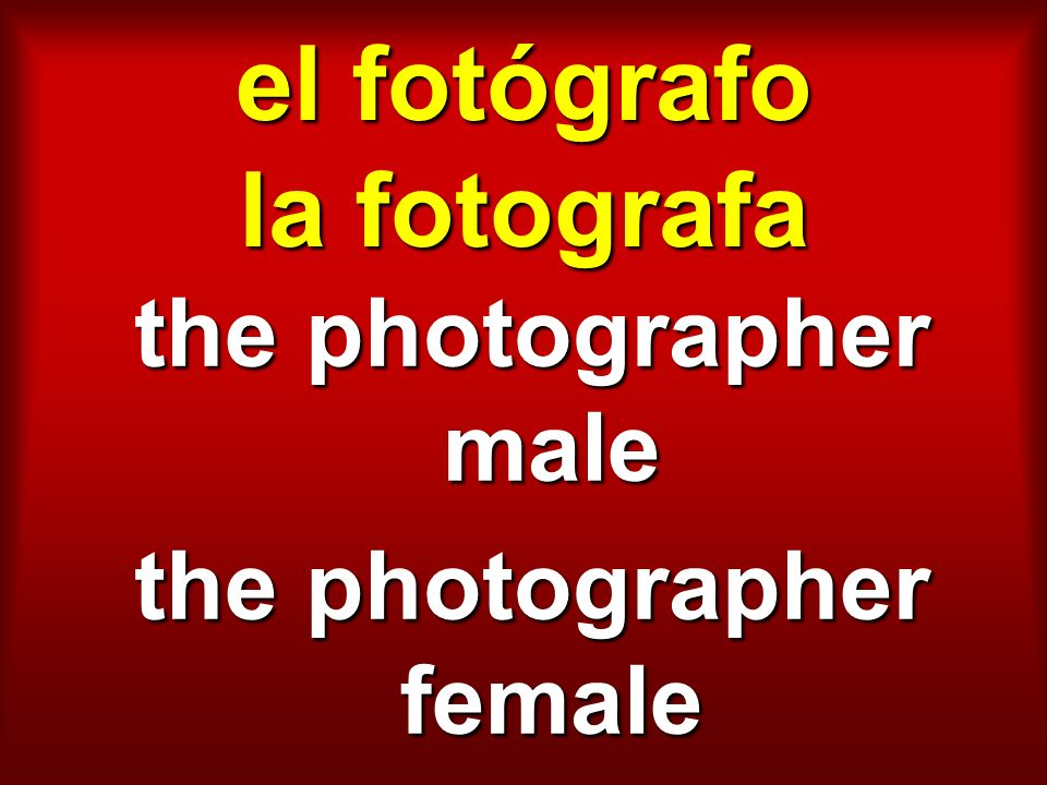 el fotógrafo la fotografa the photographer male the photographer female