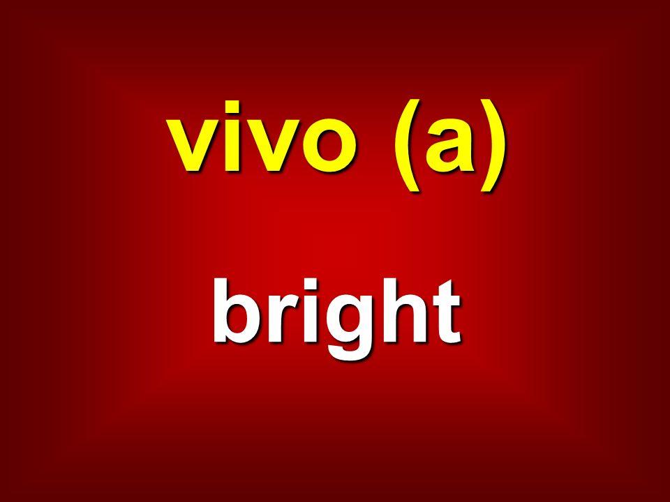 vivo (a) bright
