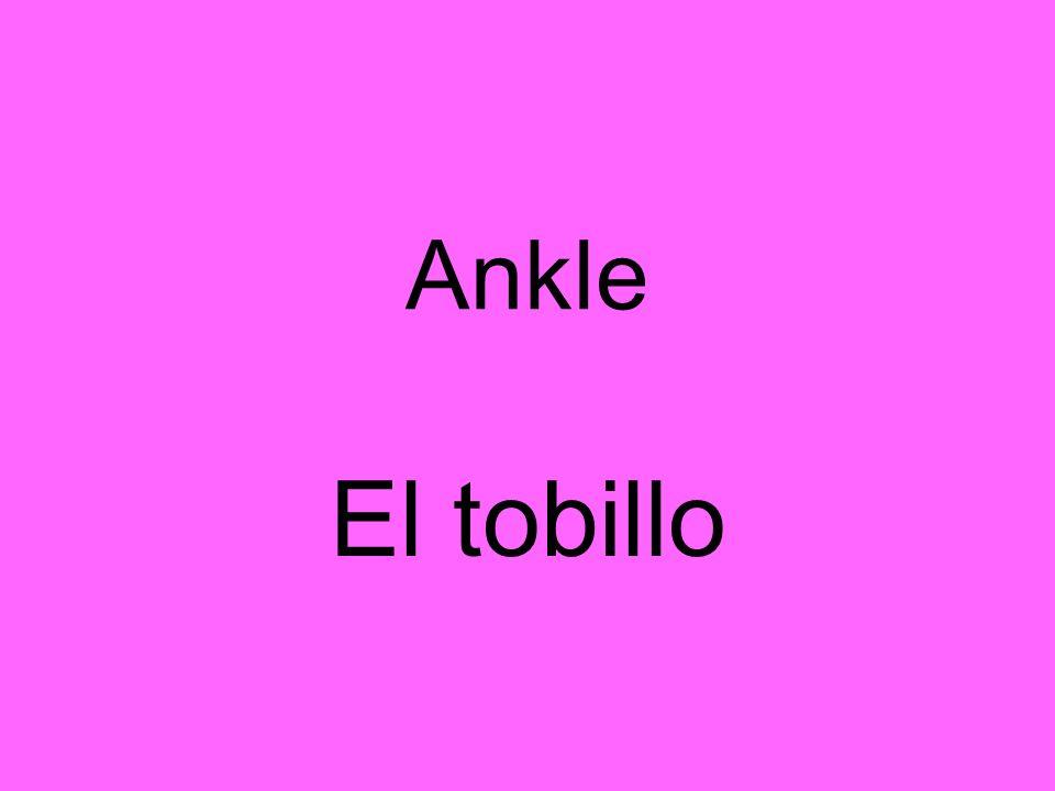 Ankle El tobillo