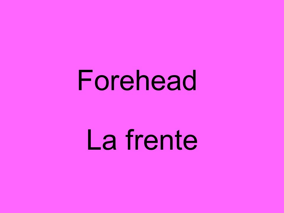 Forehead La frente