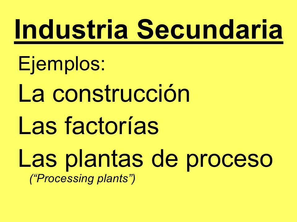 Industria Secundaria Ejemplos: La construcción Las factorías Las plantas de proceso (Processing plants)