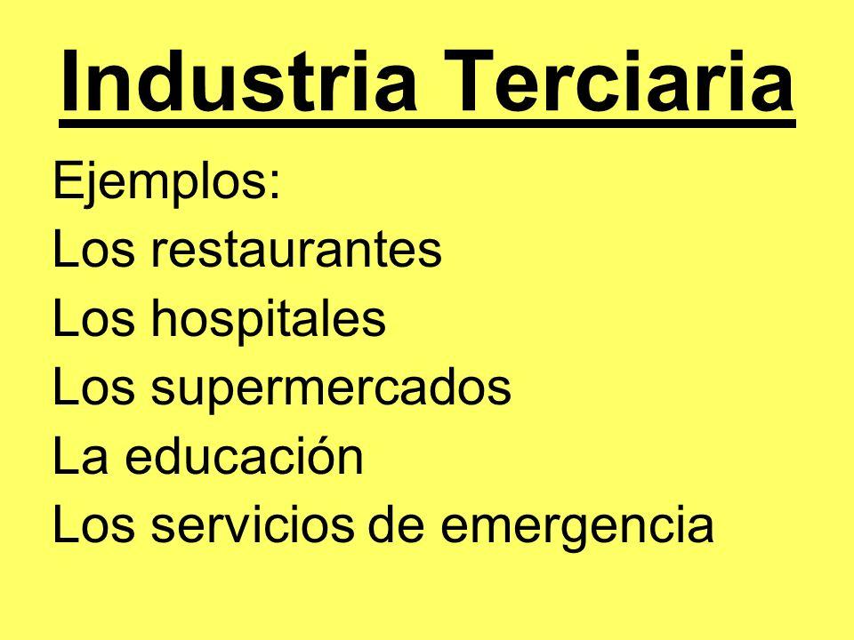Industria Cuaternaria Una industria que colecta información.