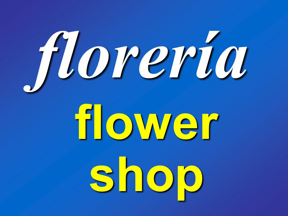 florería flower shop