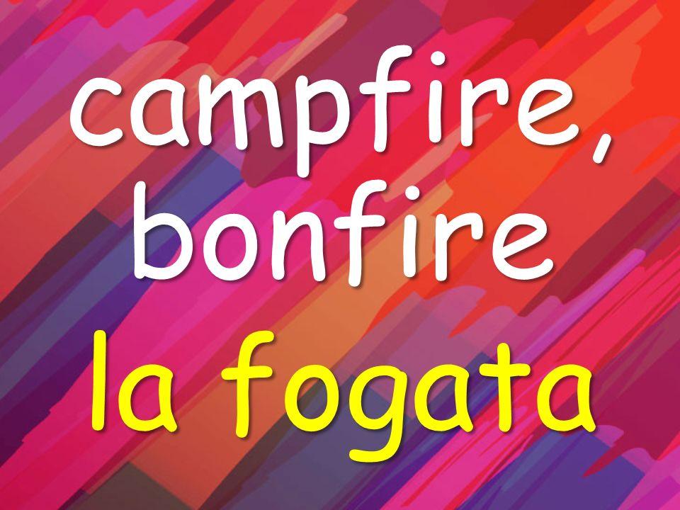 campfire, bonfire la fogata