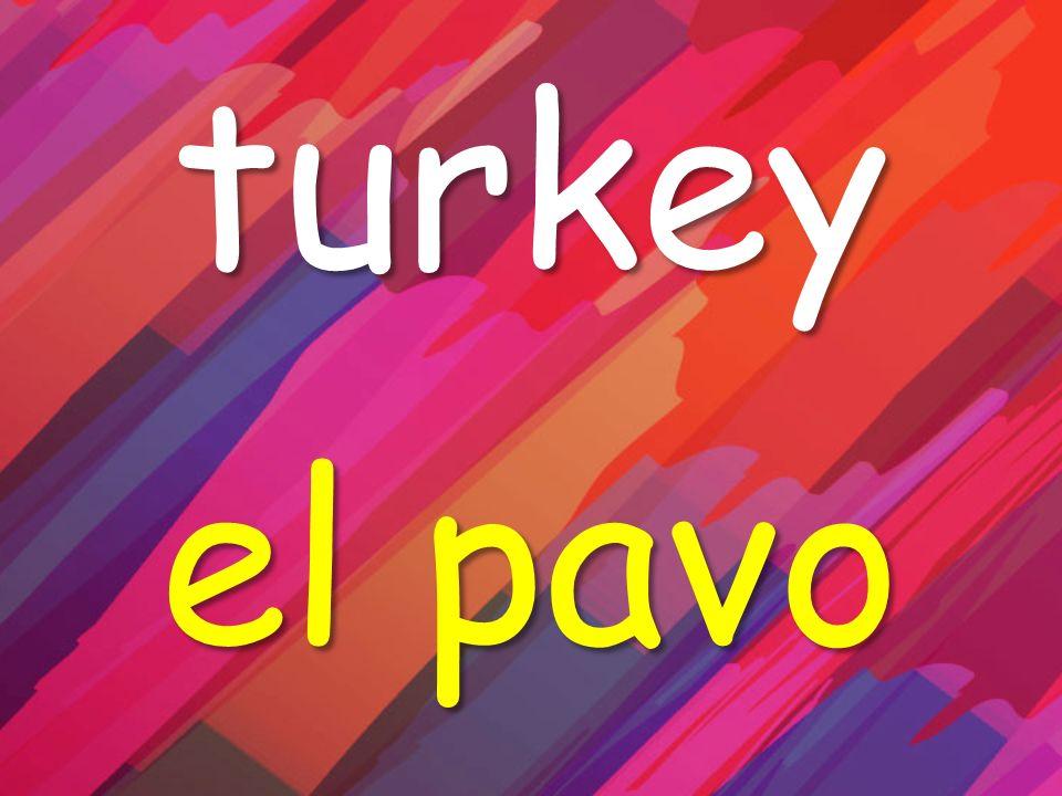 turkey el pavo