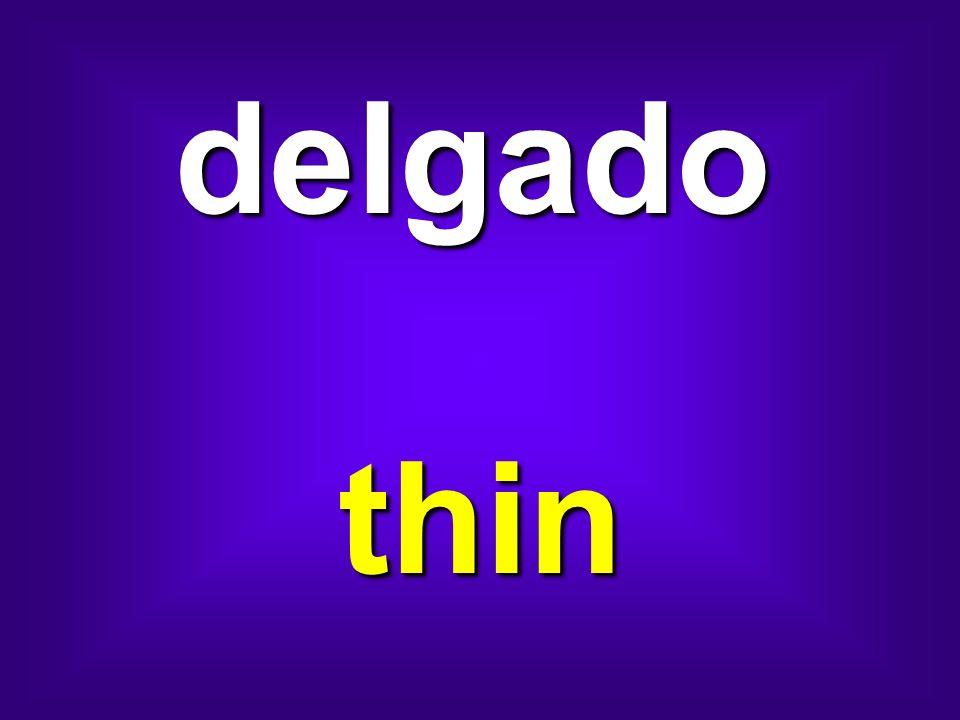 delgado thin