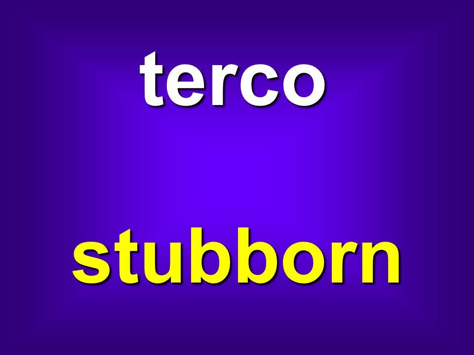 terco stubborn