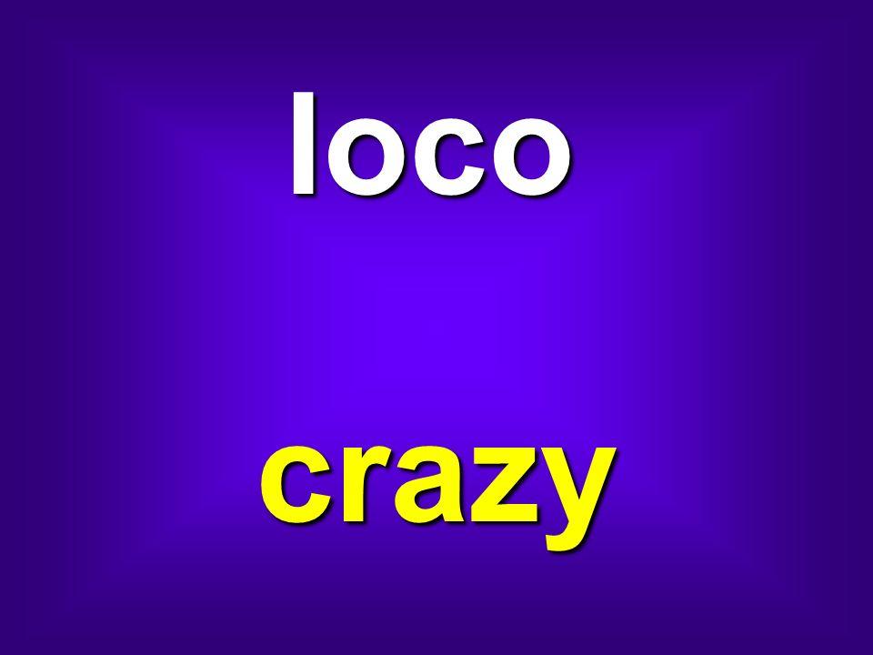 loco crazy