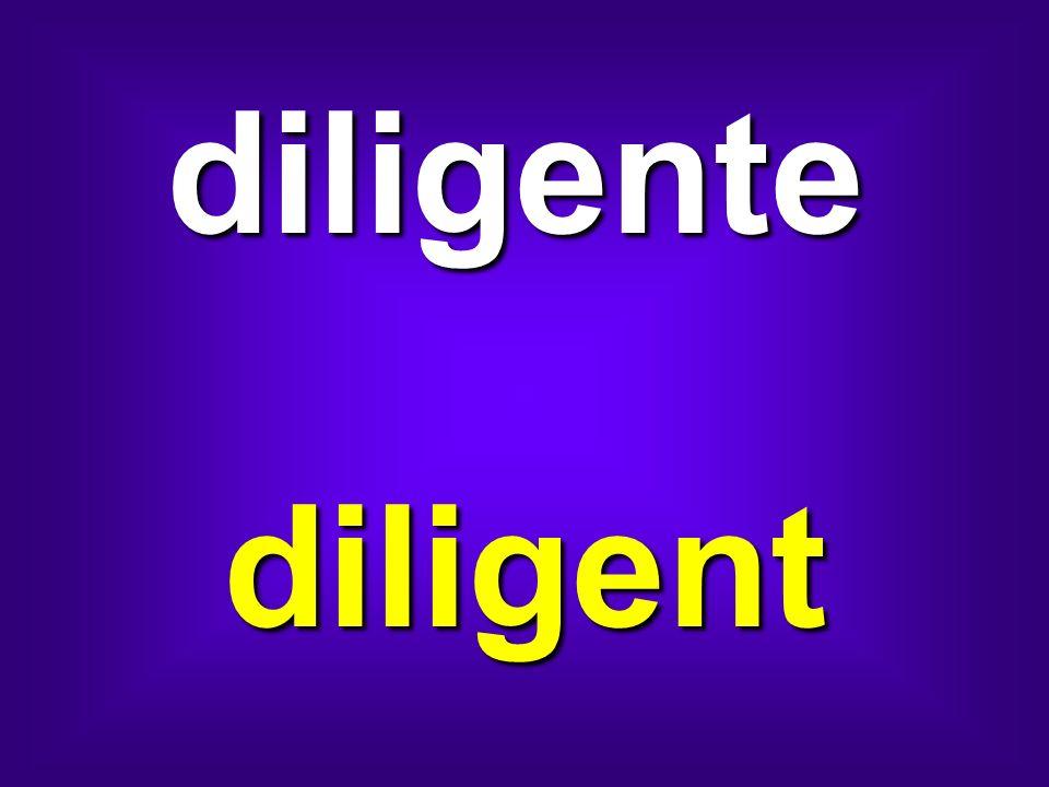 diligente diligent