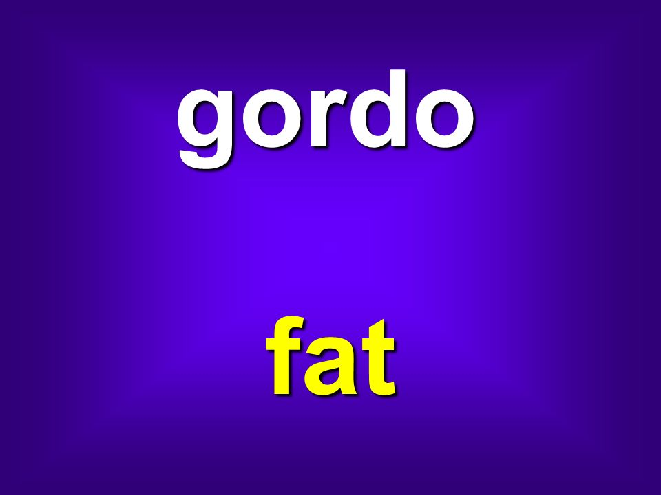 gordo fat