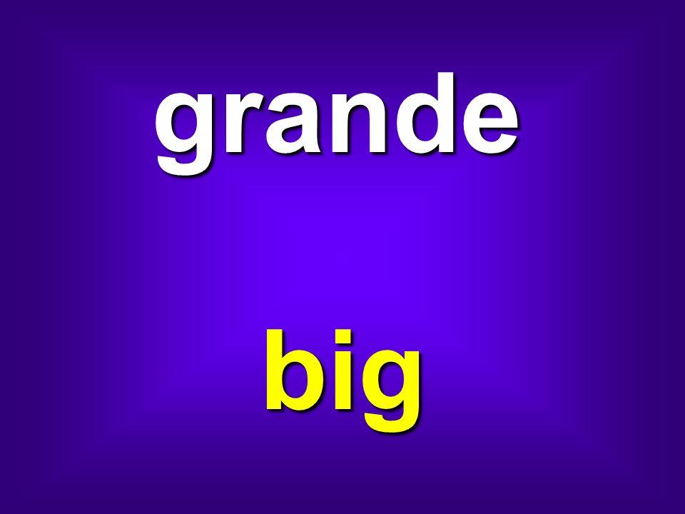 grande big