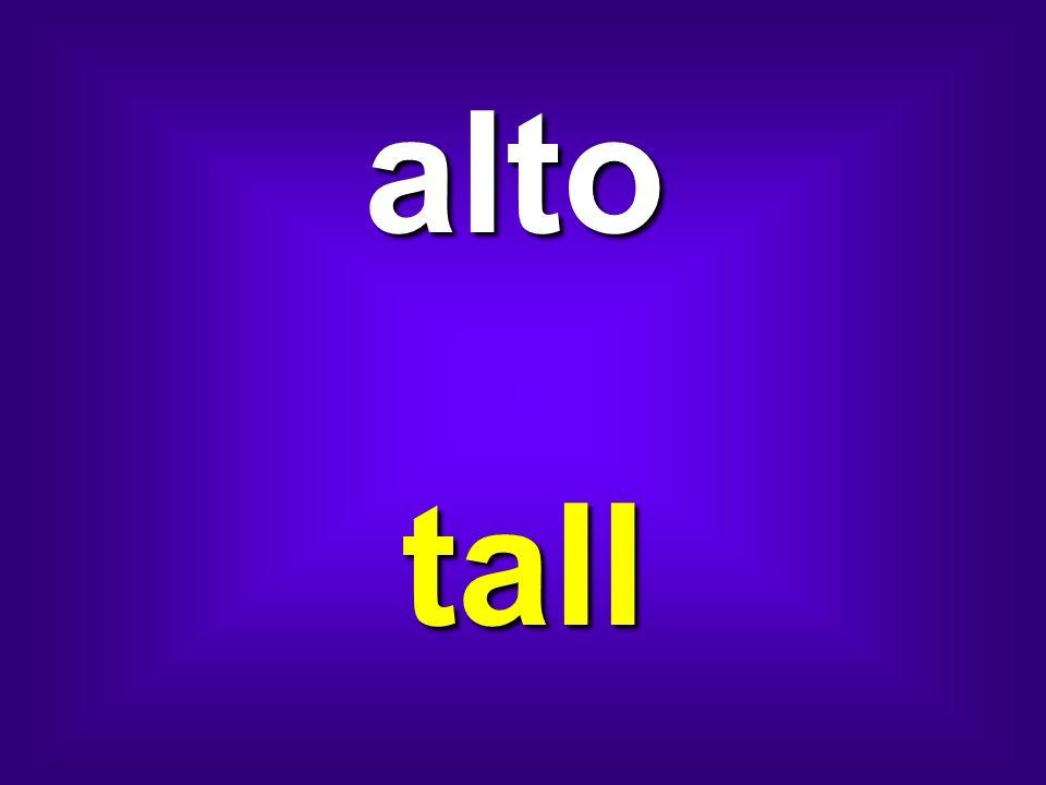 alto tall