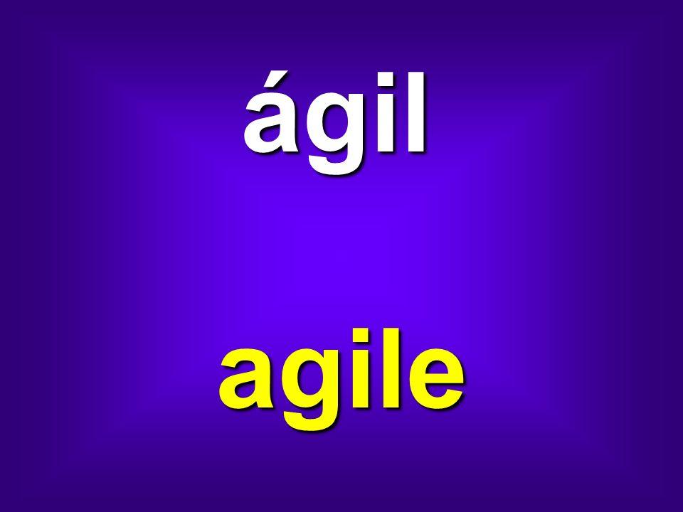 ágil agile