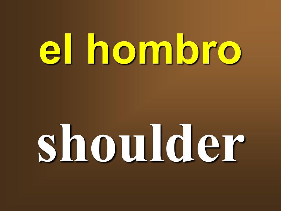 el hombro shoulder