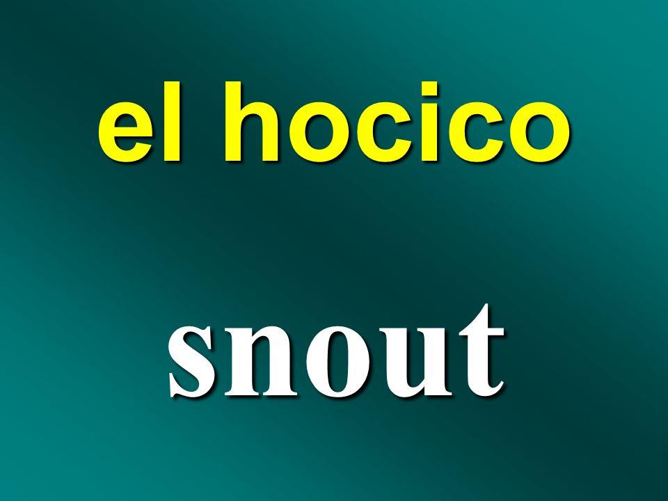 el hocico snout