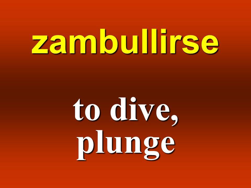 zambullirse to dive, plunge