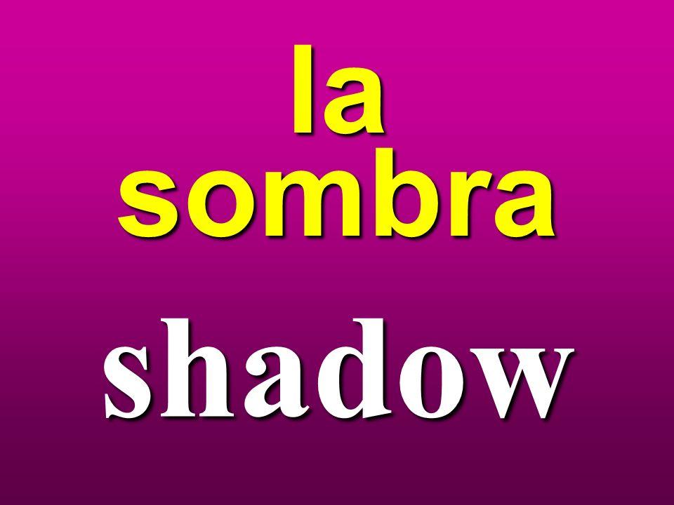 la sombra shadow
