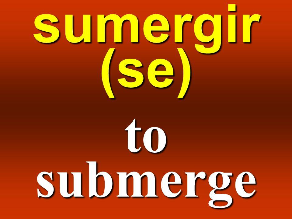 sumergir (se) to submerge