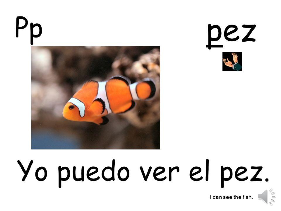 pez Yo puedo ver el pez. I can see the fish. Pp