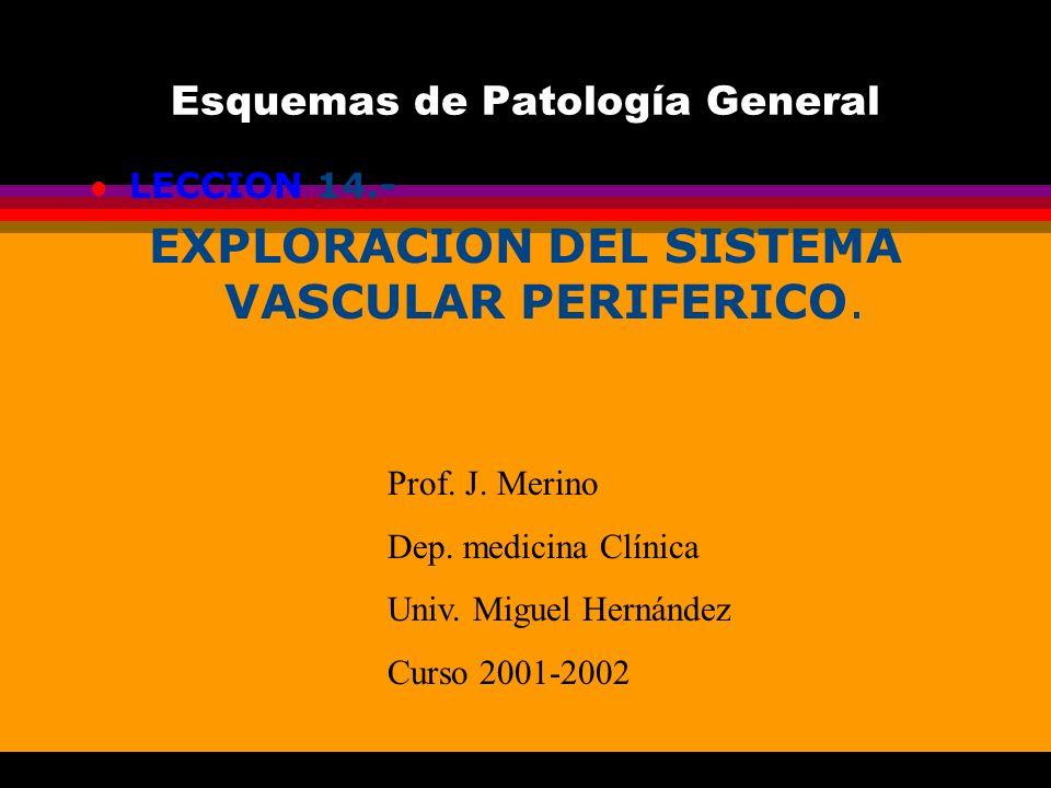 Esquemas de Patología General l LECCION 14. EXPLORACION DEL SISTEMA VASCULAR PERIFERICO. Prof. J. Merino Dep. medicina Clínica Univ. Miguel Hernández