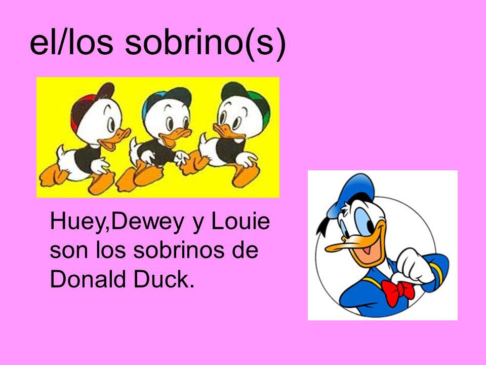 el/los sobrino(s) Huey,Dewey y Louie son los sobrinos de Donald Duck.