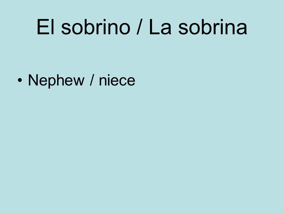 El sobrino / La sobrina Nephew / niece