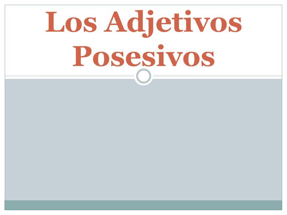 Los Adjetivos Posesivos….Show possession or ownership.