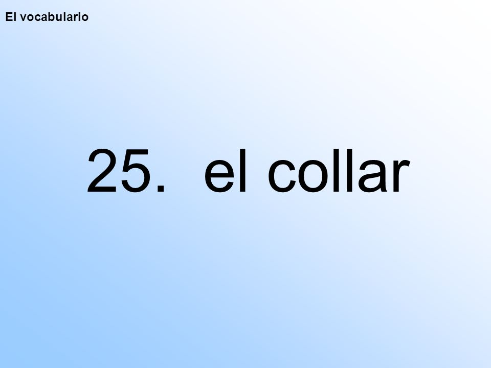 El vocabulario 25. el collar