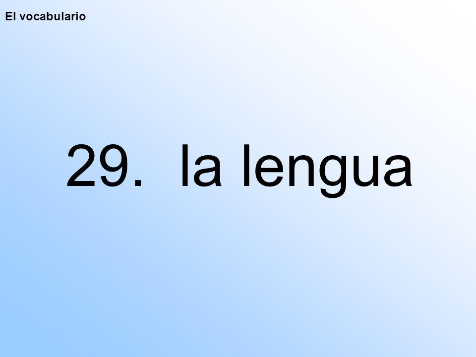 El vocabulario 29. la lengua