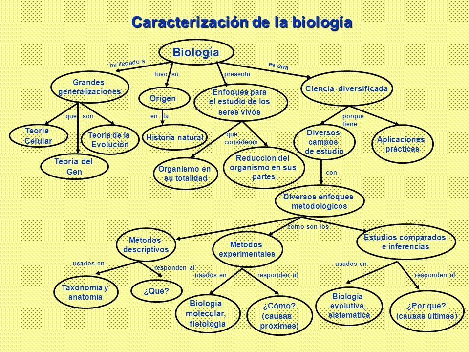 Biología Grandes generalizaciones Origen Ciencia diversificada Diversos enfoques metodológicos Teoría Celular Enfoques para el estudio de los seres vi