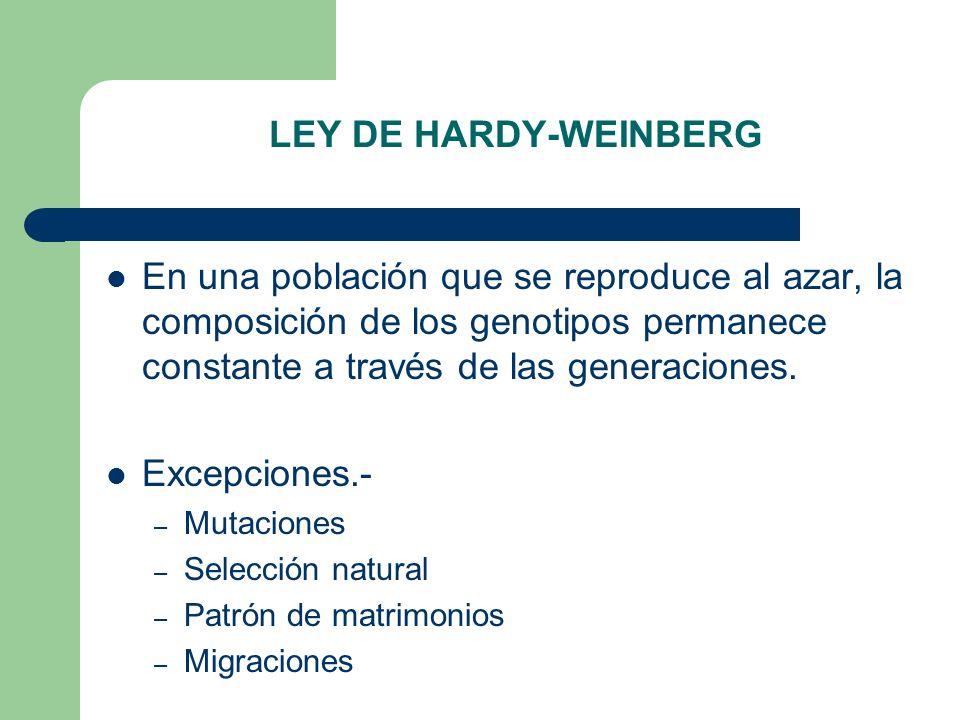 LEY DE HARDY-WEINBERG En una población que se reproduce al azar, la composición de los genotipos permanece constante a través de las generaciones. Exc