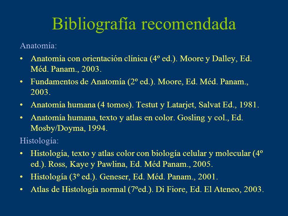 Bibliografía recomendada Anatomía: Anatomía con orientación clínica (4º ed.). Moore y Dalley, Ed. Méd. Panam., 2003. Fundamentos de Anatomía (2º ed.).