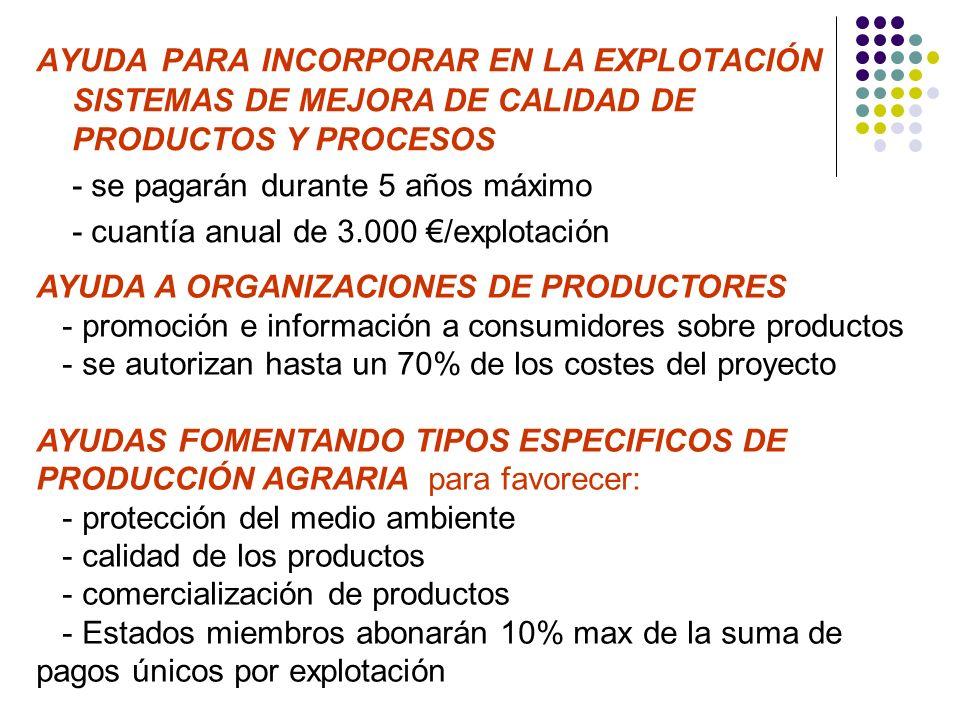 AYUDA PARA INCORPORAR EN LA EXPLOTACIÓN SISTEMAS DE MEJORA DE CALIDAD DE PRODUCTOS Y PROCESOS - se pagarán durante 5 años máximo - cuantía anual de 3.