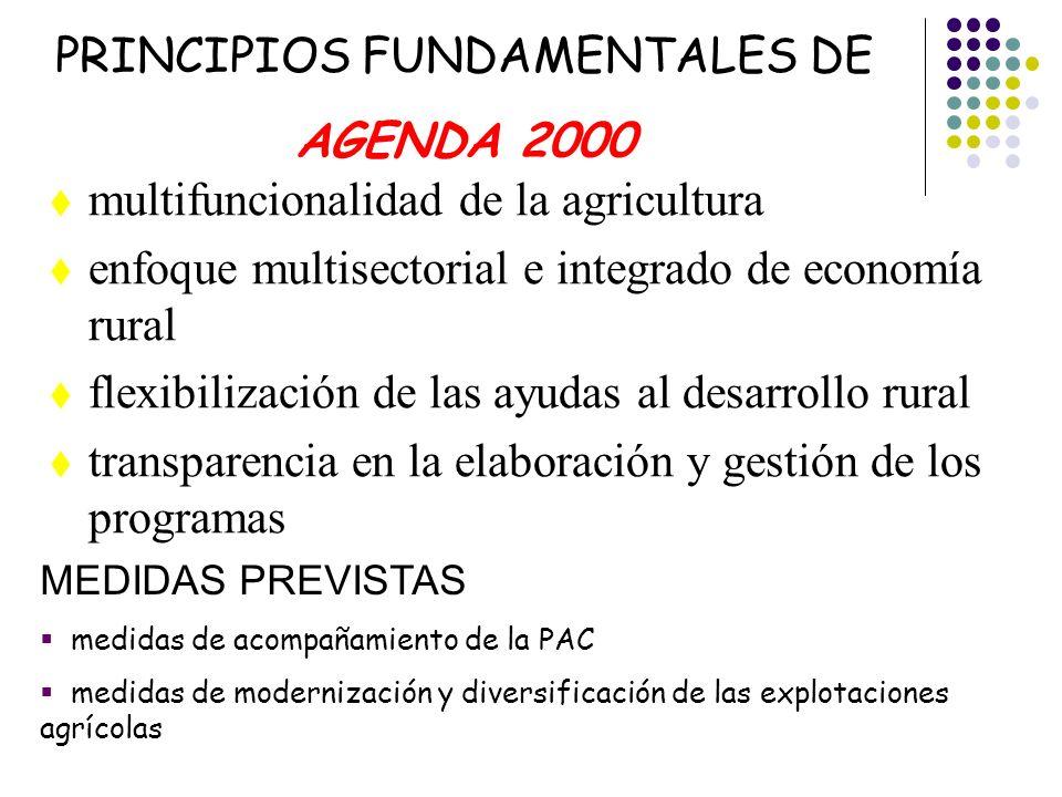 multifuncionalidad de la agricultura enfoque multisectorial e integrado de economía rural flexibilización de las ayudas al desarrollo rural transparen