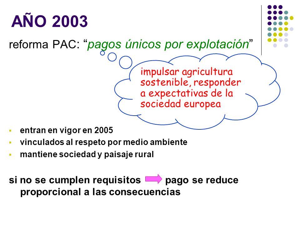 reforma PAC : pagos únicos por explotación entran en vigor en 2005 vinculados al respeto por medio ambiente mantiene sociedad y paisaje rural si no se