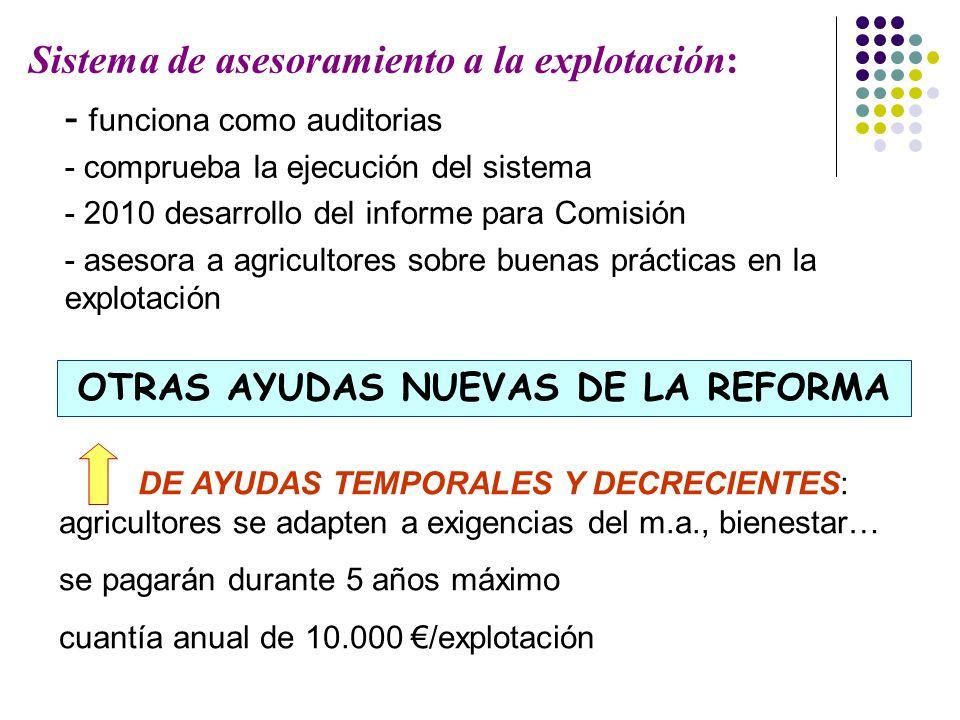 Sistema de asesoramiento a la explotación: - funciona como auditorias - comprueba la ejecución del sistema - 2010 desarrollo del informe para Comisión