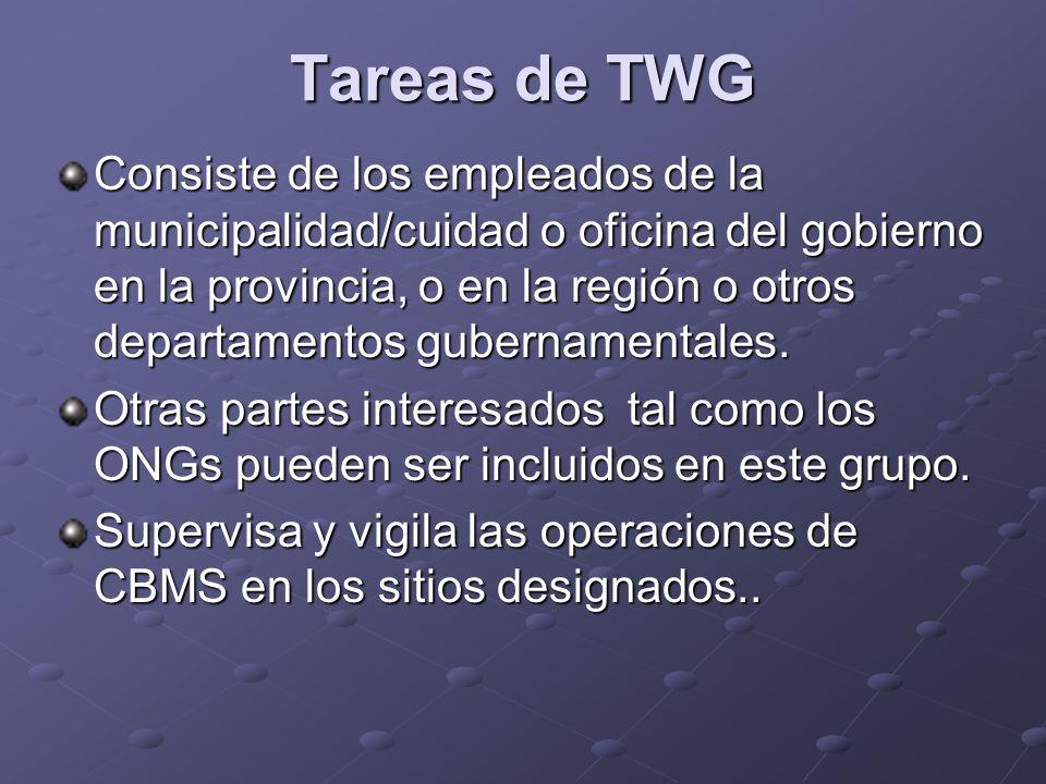 Tareas de TWG Consiste de los empleados de la municipalidad/cuidad o oficina del gobierno en la provincia, o en la región o otros departamentos gubernamentales.