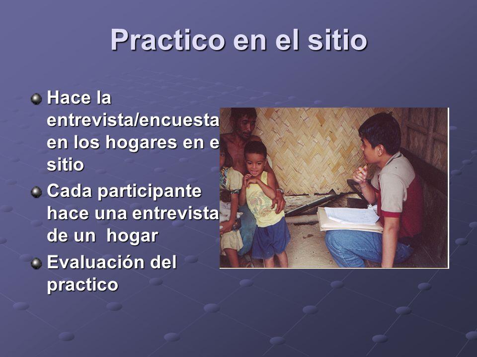 Practico en el sitio Hace la entrevista/encuesta en los hogares en el sitio Cada participante hace una entrevista de un hogar Evaluación del practico