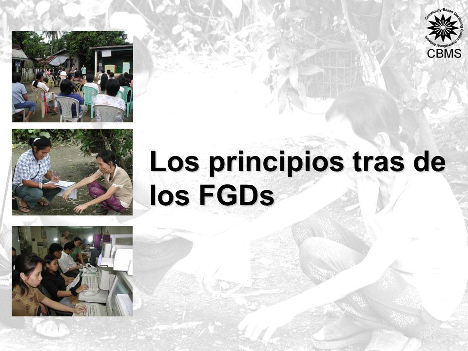 Los principios tras de los FGDs