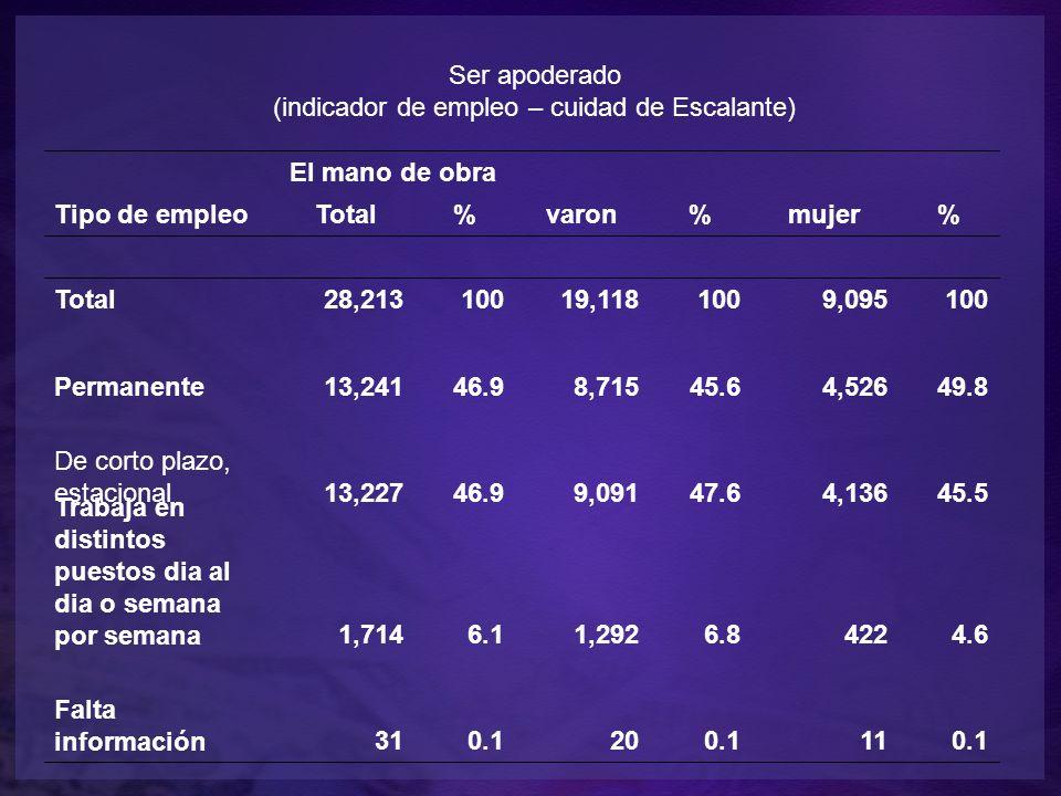 Ser apoderado (indicador de empleo – cuidad de Escalante) Tipo de empleo El mano de obra Total%varon%mujer% Total28,21310019,1181009,095100 Permanente