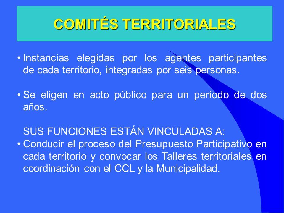 Instancias elegidas por los agentes participantes de cada territorio, integradas por seis personas. Se eligen en acto público para un período de dos a