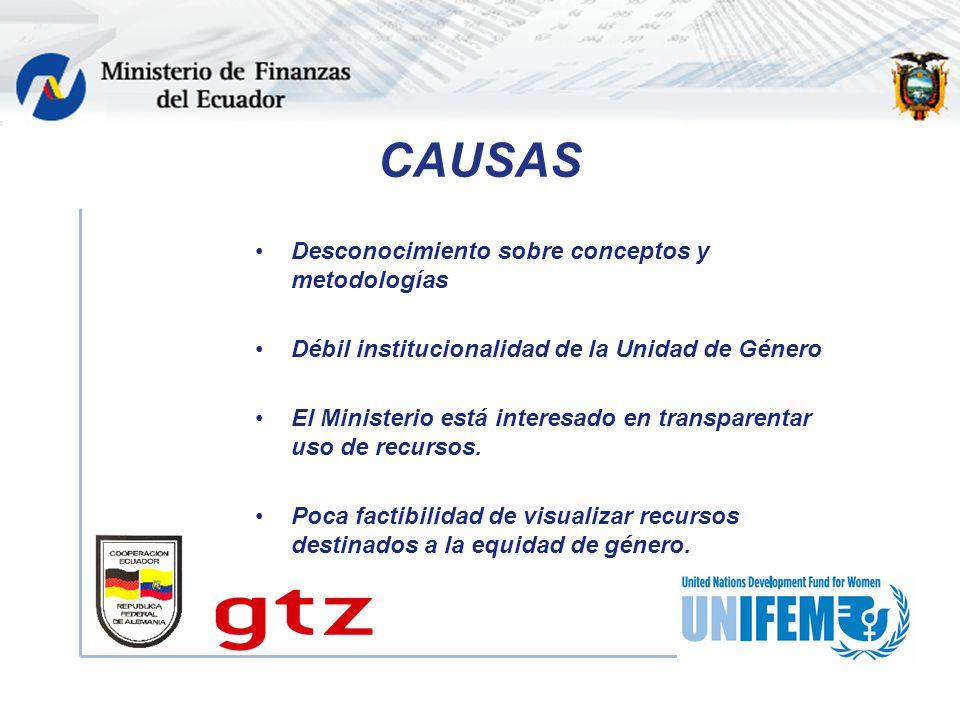 CAUSAS Desconocimiento sobre conceptos y metodologías Débil institucionalidad de la Unidad de Género El Ministerio está interesado en transparentar uso de recursos.