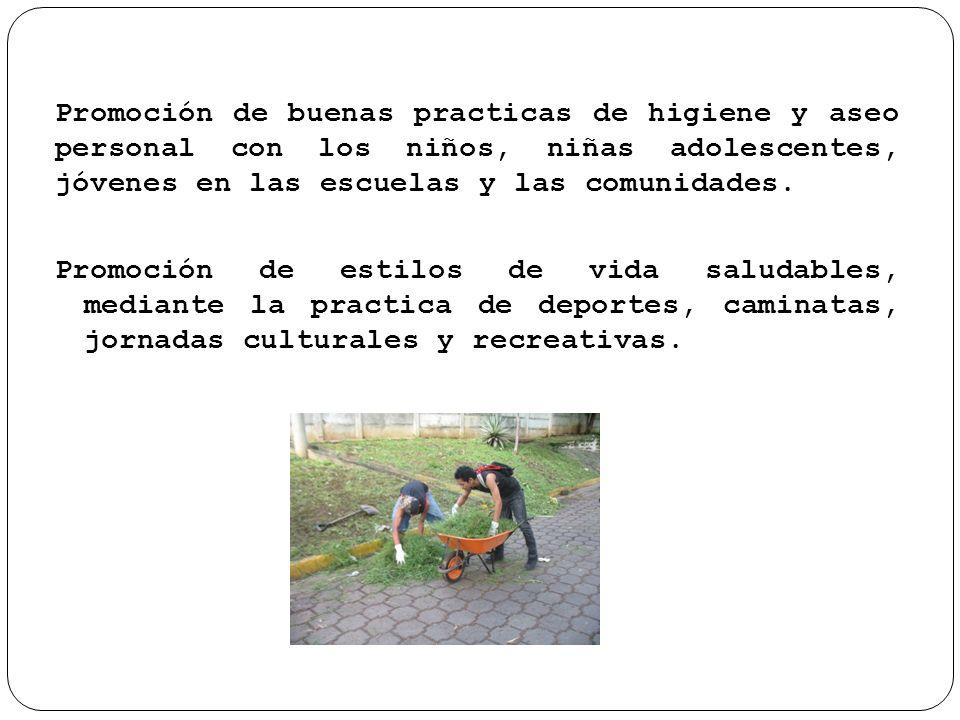 Fortalecimiento de entornos saludables atraves de reconstruccion de espacios familiares recreativos.