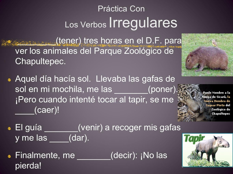 Práctica Con Los Verbos Irregulares ________(tener) tres horas en el D.F.