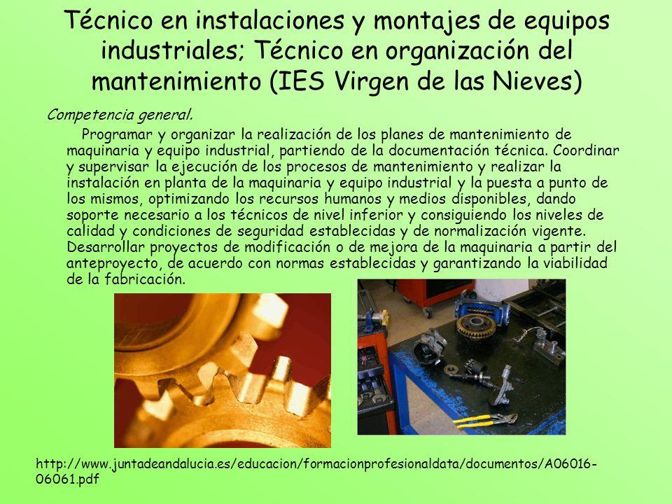 Técnico en instalaciones y montajes de equipos industriales; Técnico en organización del mantenimiento (IES Virgen de las Nieves) Competencia general.