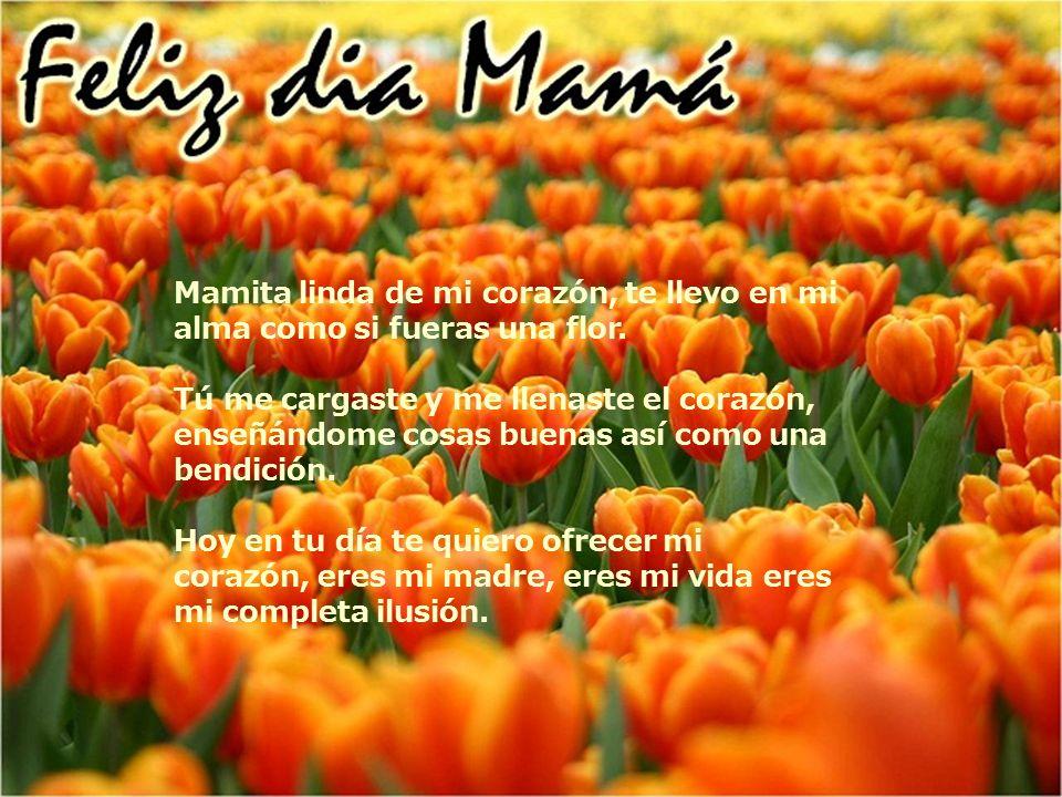 Mamita linda de mi corazón, te llevo en mi alma como si fueras una flor. Tú me cargaste y me llenaste el corazón, enseñándome cosas buenas así como un