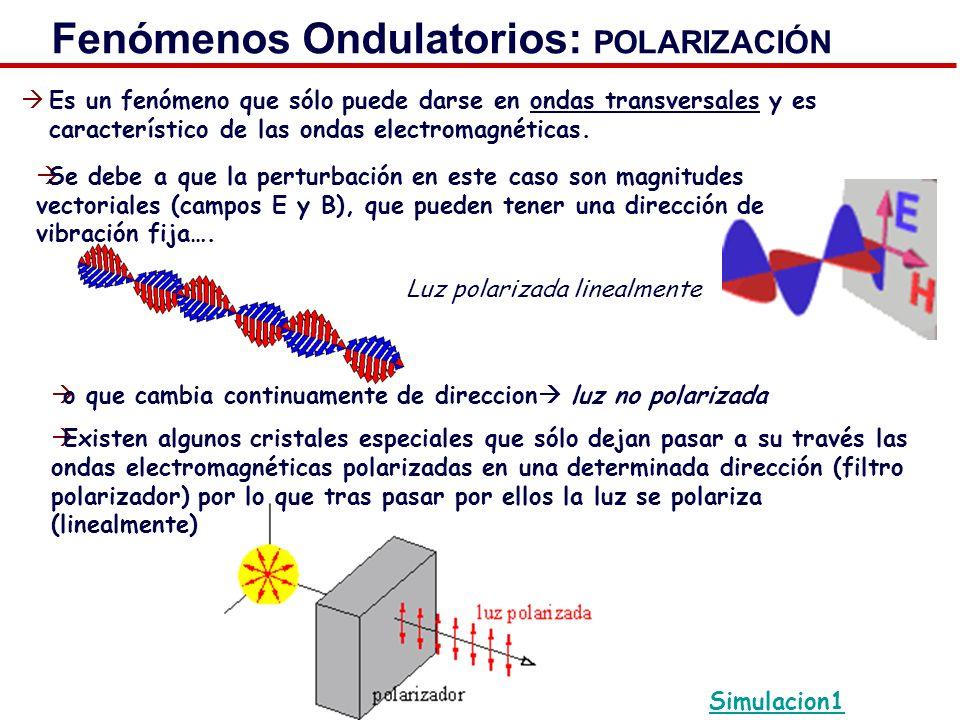 Fenómenos Ondulatorios: POLARIZACIÓN Es un fenómeno que sólo puede darse en ondas transversales y es característico de las ondas electromagnéticas. Si