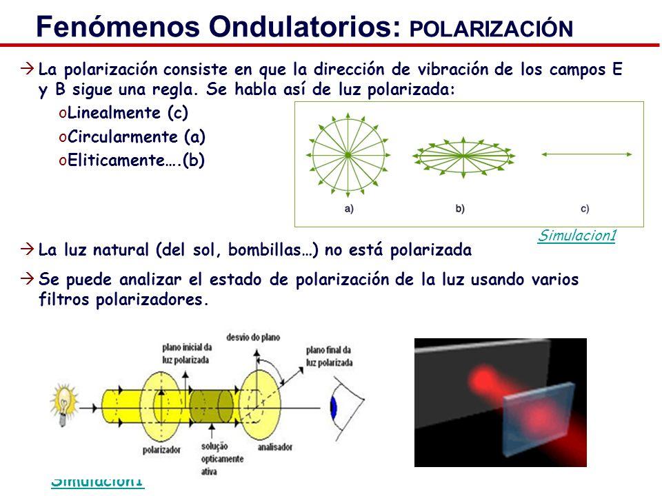 Fenómenos Ondulatorios: POLARIZACIÓN La polarización consiste en que la dirección de vibración de los campos E y B sigue una regla. Se habla así de lu