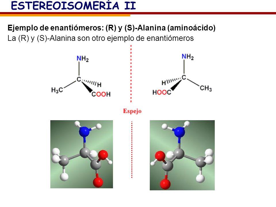 Ejemplo de enantiómeros: (R) y (S)-Alanina (aminoácido) La (R) y (S)-Alanina son otro ejemplo de enantiómeros ESTEREOISOMERÍA II