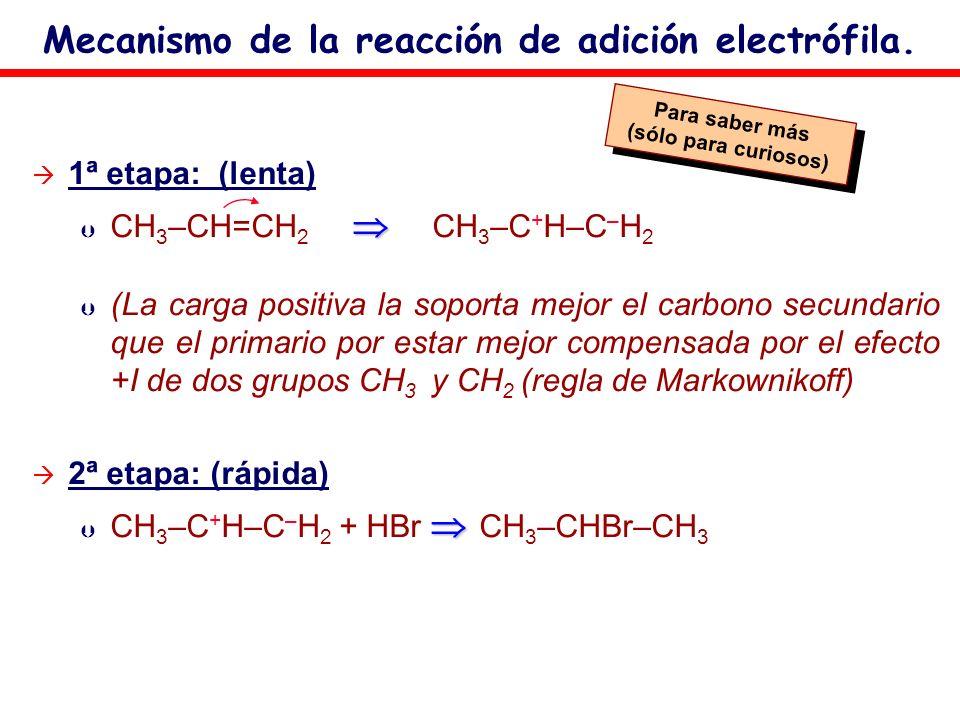 Mecanismo de la reacción de adición electrófila. 1ª etapa: (lenta) Þ CH 3 –CH=CH 2 CH 3 –C + H–C – H 2 Þ (La carga positiva la soporta mejor el carbon